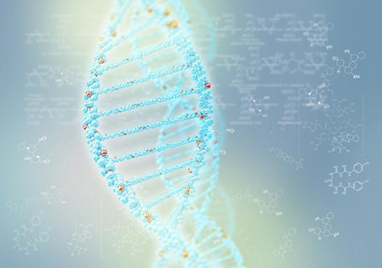 DNA-Baseline-Study-Google-Magic