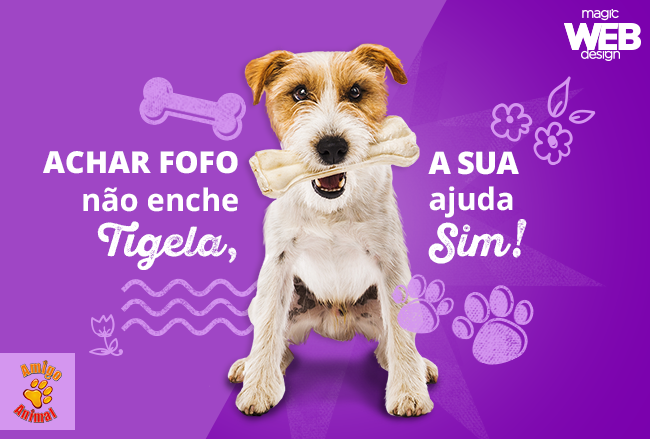 #MyMagicHeart: campanha para ajudar a ONG Amigo Animal