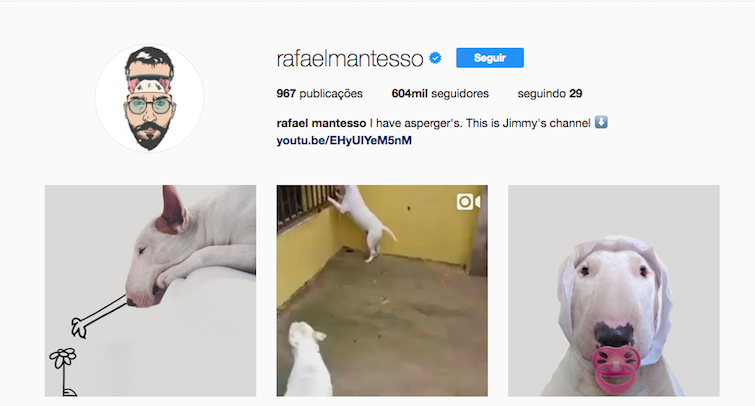 Pet influencer: quais são os animais mais conhecidos na web? - Magic Web Design